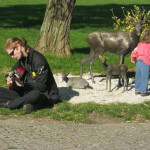 Prague Pagan Pride - hudební entrée